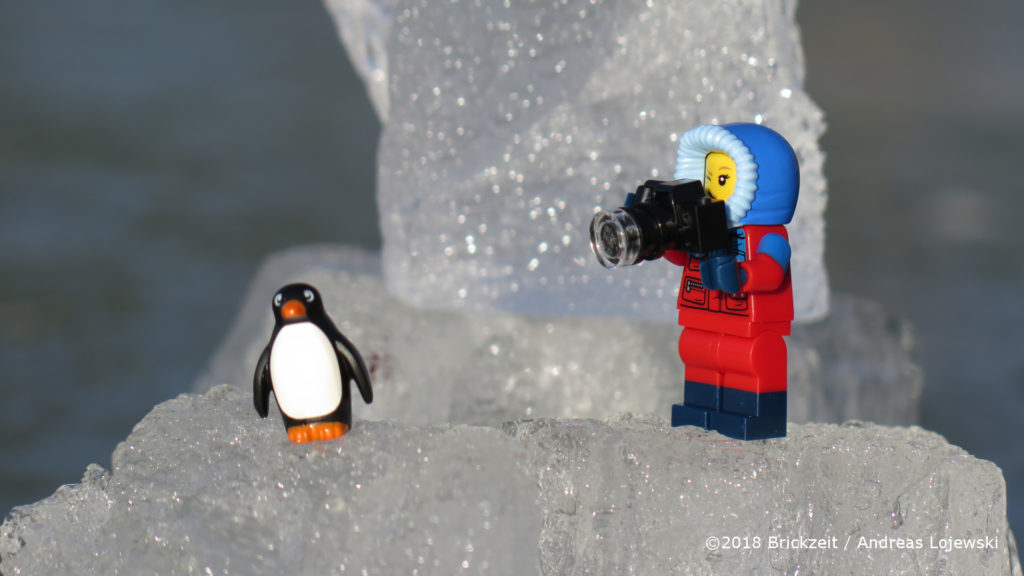 Bricks on Ice - Forscherin mit Kamera und Pinguin 1 | ©2018 Brickzeit