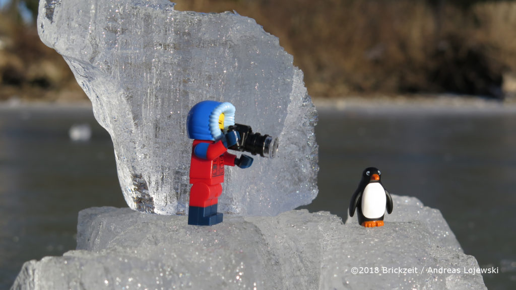 Bricks on Ice - Forscherin mit Kamera und Pinguin 2 | ©2018 Brickzeit