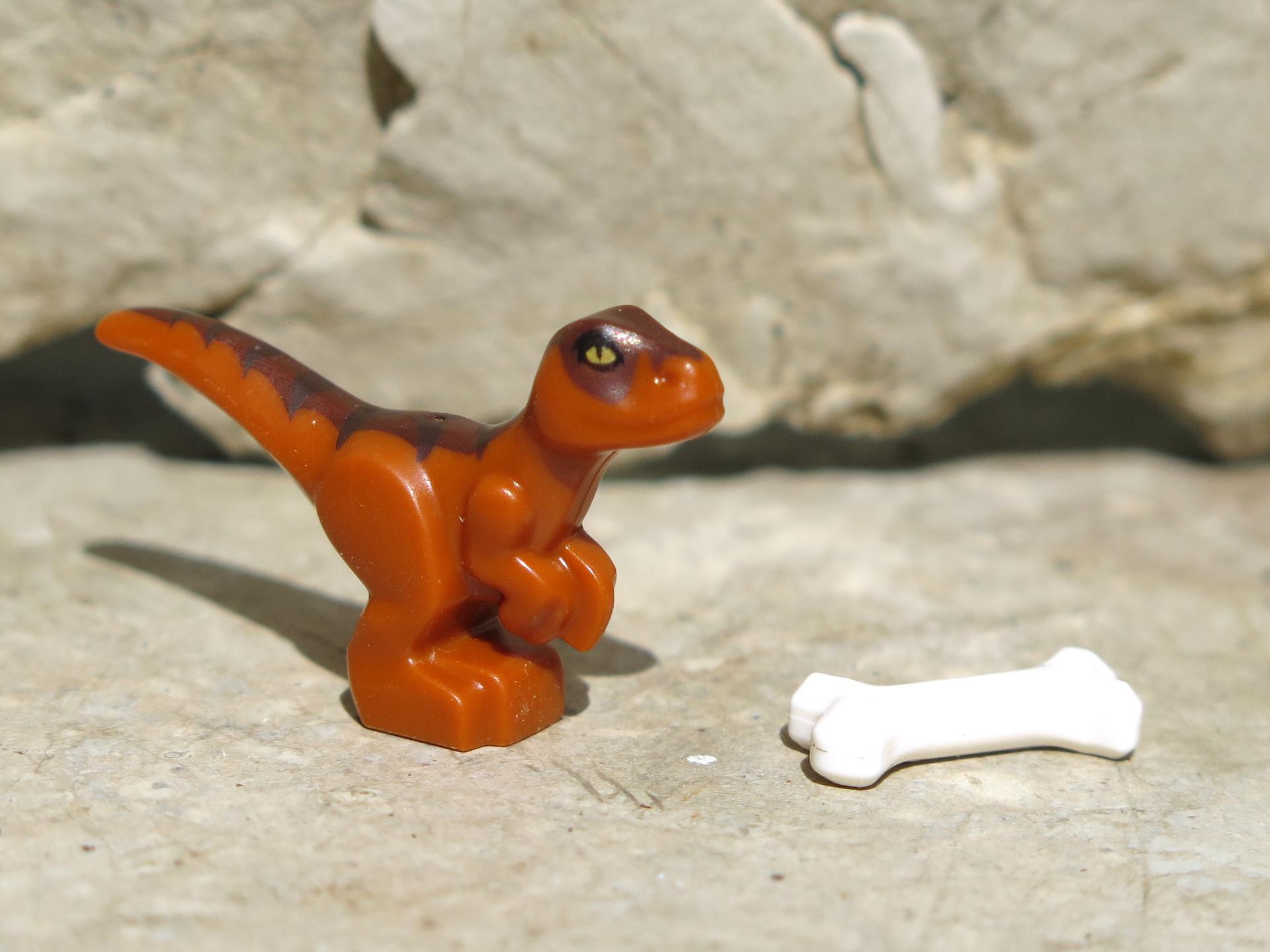 LEGO® Jurassic World™ Magazin Nr. 1 - Baby Raptor rechte Seite | ©2018 Brickzeit