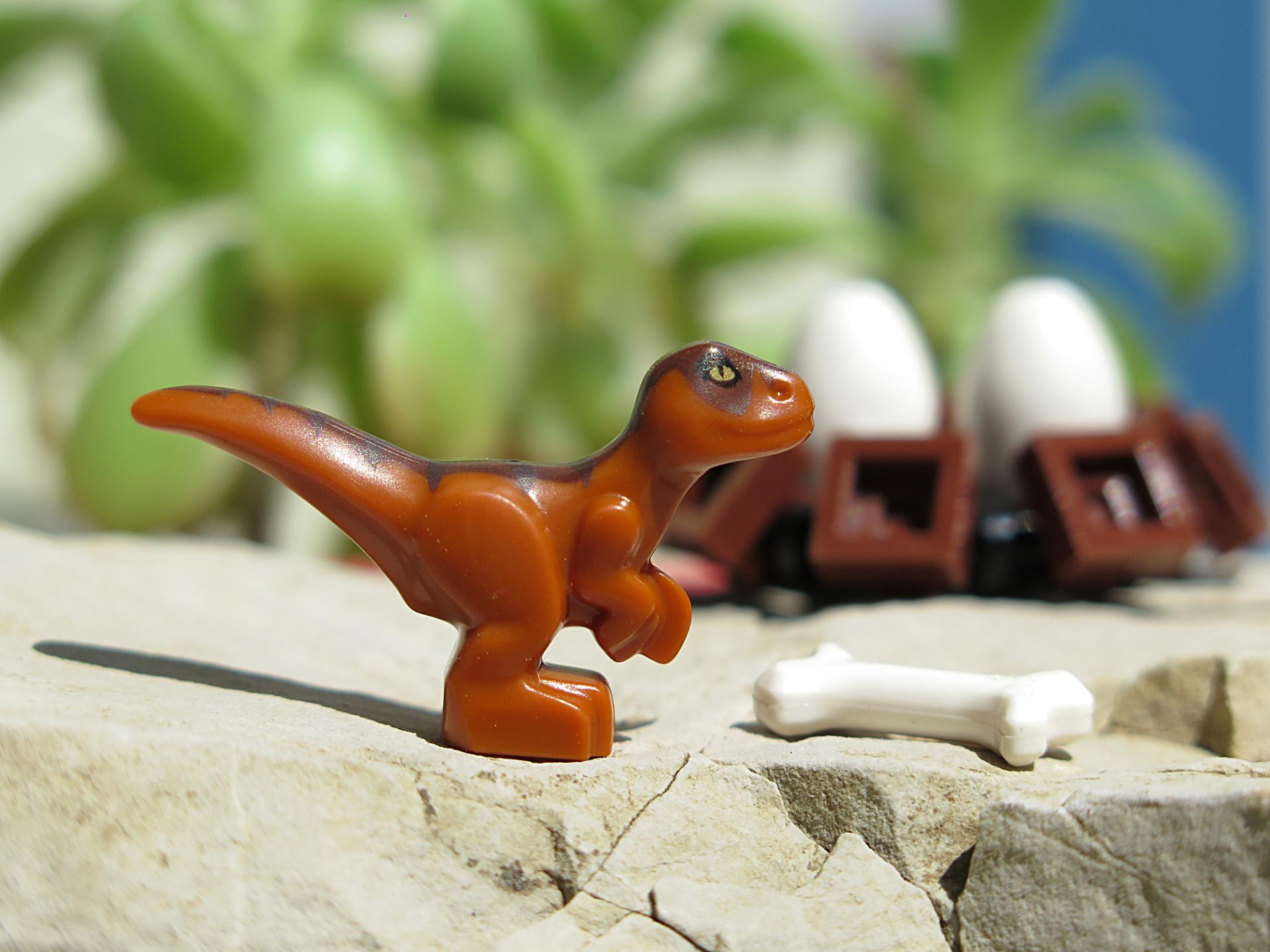 LEGO® Jurassic World™ Magazin Nr. 1 - Baby Raptor vor Jungel | ©2018 Brickzeit
