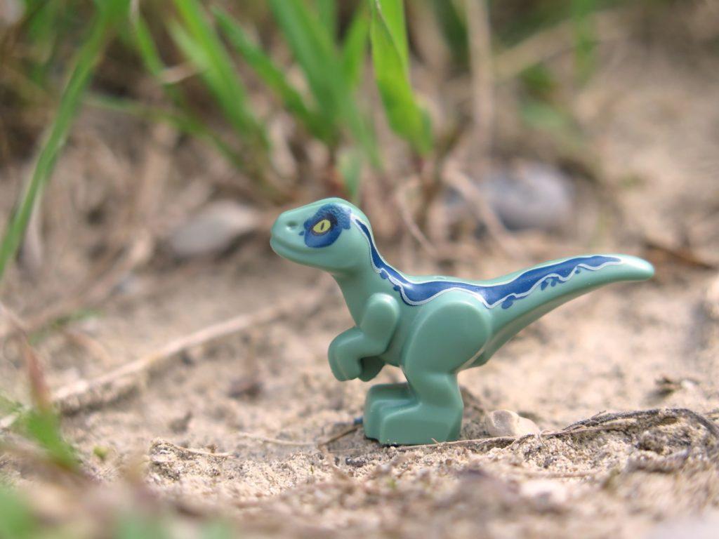 LEGO® Jurassic World™ Spielgehege für Baby-Velociraptor (30382) - Blue von der Seite | ®2018 Brickzeit