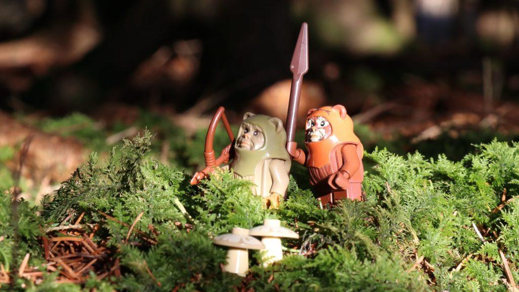 Wicket mit einem Ewok Krieger auf Jagd | ©2018 Brickzeit
