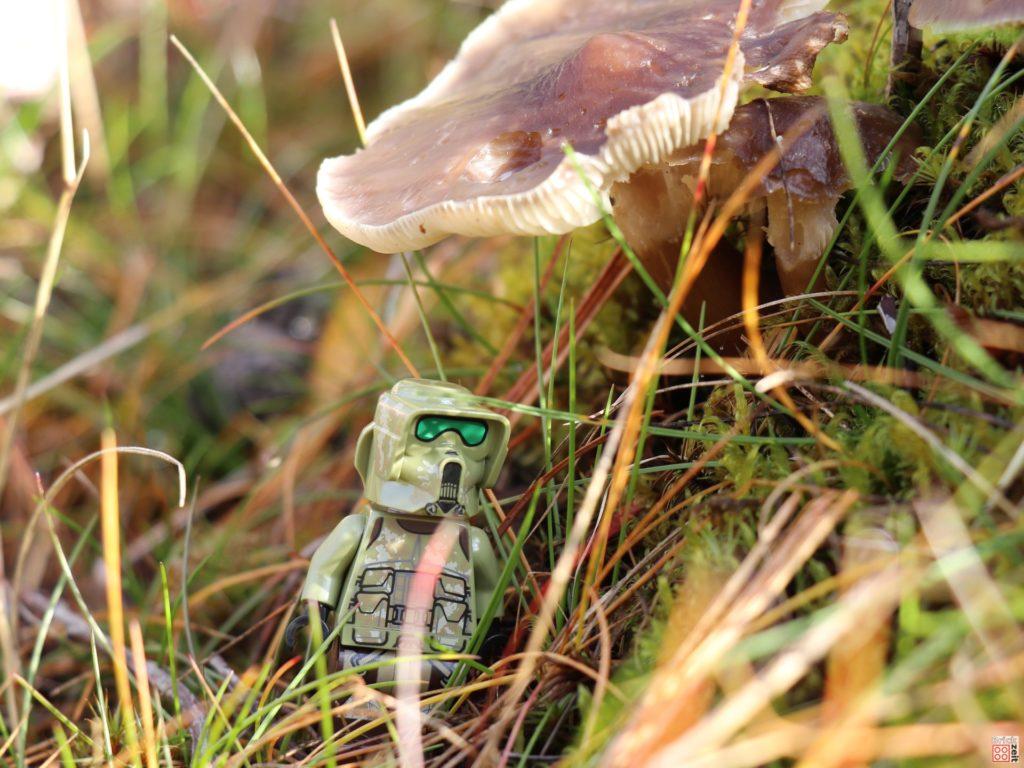 LEGO Clone Scout Trooper unter einem Pilz | ©2019 Brickzeit