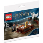 LEGO 30420 Harry Potter und Hedwig Polybag | ©LEGO Gruppe
