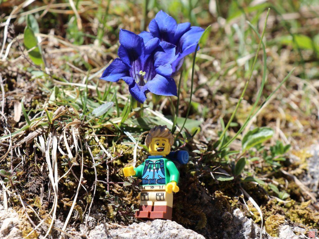 LEGO Wanderer unter Enzian | ©2020 Brickzeit
