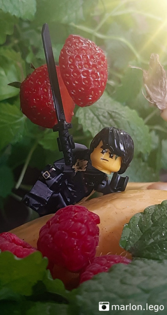 Ninja mach Obstsalat | ©marlon.lego
