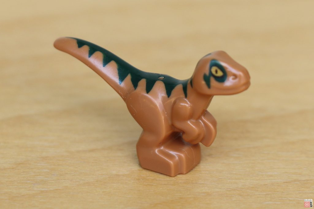 LEGO Jurassic World - Dino-Labor, Baby Raptor vorne | ©Brickzeit