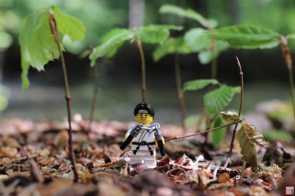 Nunchaku Training im Wald | ©2020 Brickzeit
