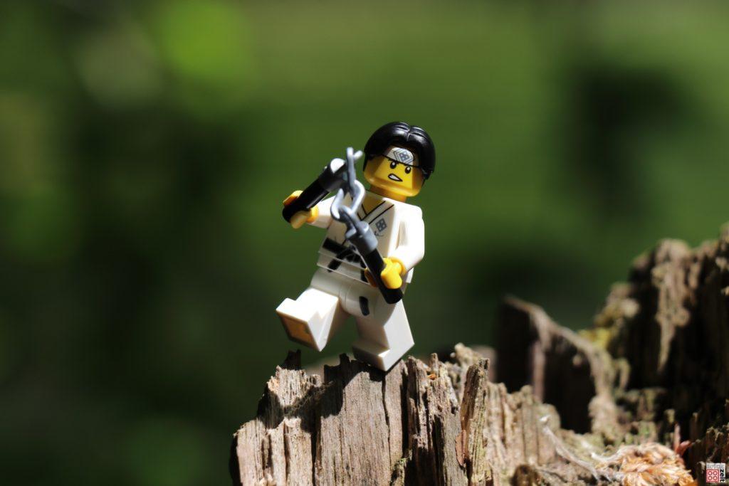 Nunchaku-Form auf Baumstumpf | ©2020 Brickzeit