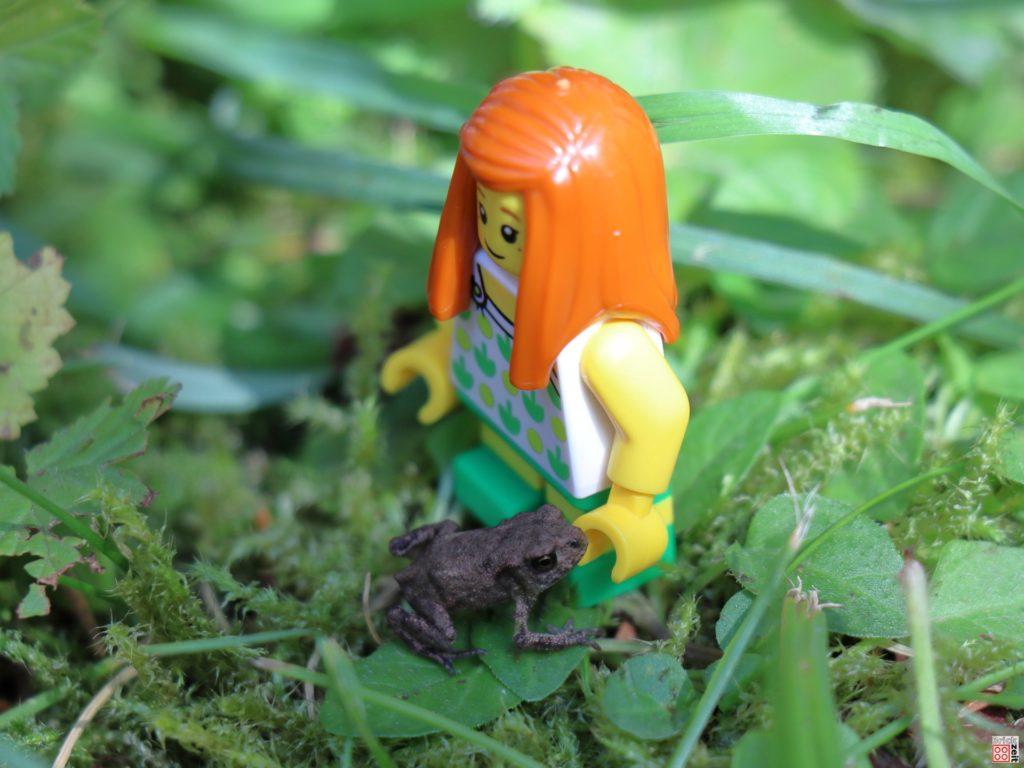 Bist du der Froschkönig? | ©2020 Brickzeit