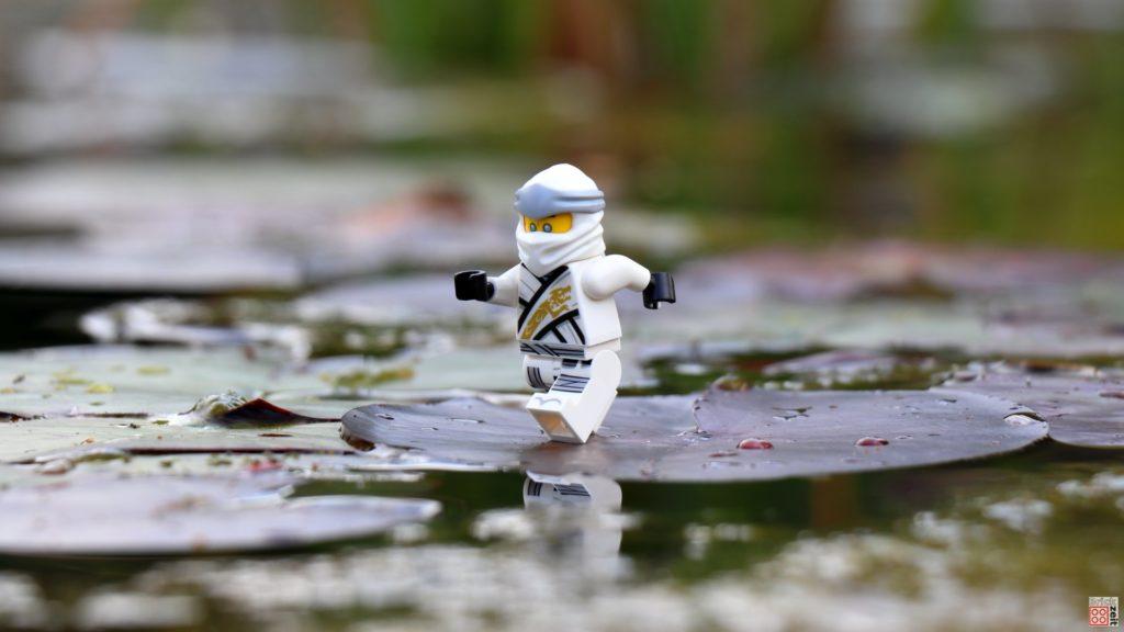 Zane läuft über Seerosenblätter | ©2020 Brickzeit