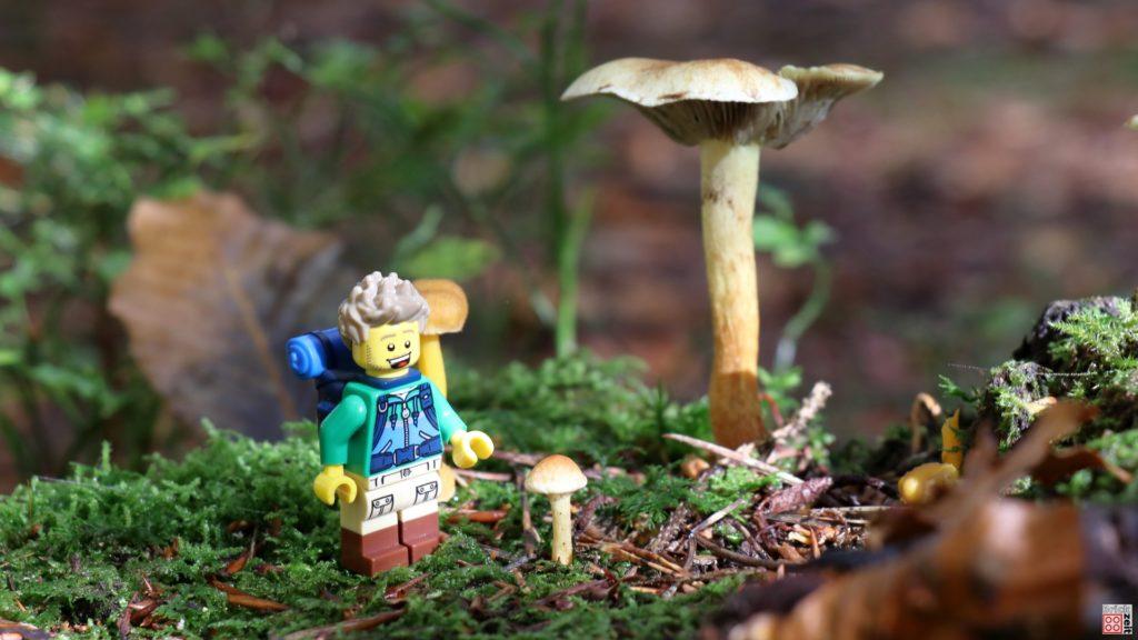 Kleine Pilzlandschaft   ©Brickzeit